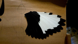WING FEATHER BASES