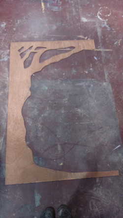 SECTION OF TREE SCREEN