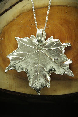 3931 - Large Sycamore leaf