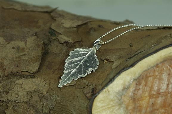 5303 - Silver Birch leaf
