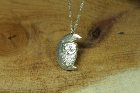 5433 - Small owl on moon