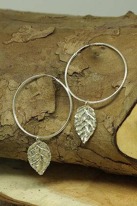 6393 - Large hoop earrings with leaf