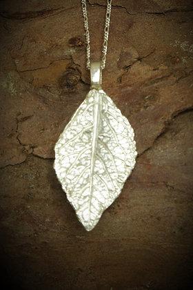 3065 - Leaf