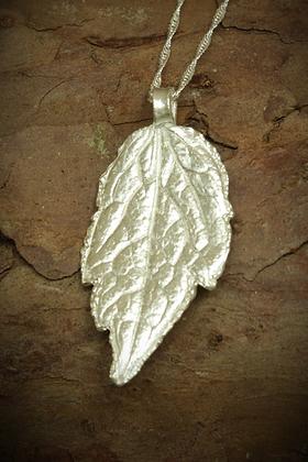 3075 - Clematis leaf