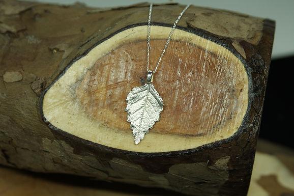 5321 - Silver Birch leaf