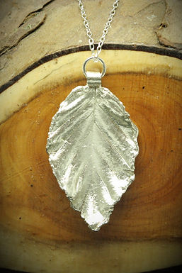3940 - Large Beech leaf