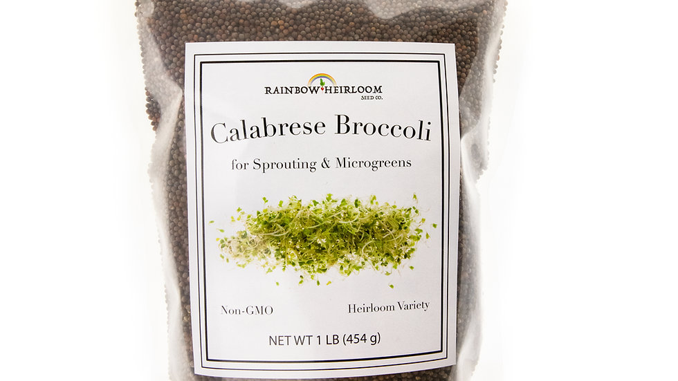 Calabrese Broccoli Sprouting & Microgreen Seeds