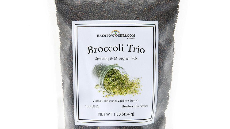 Broccoli Trio Sprouting & Microgreen Mix