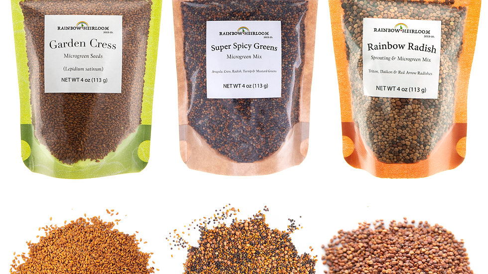 Spicy Microgreen Seed Variety Pack