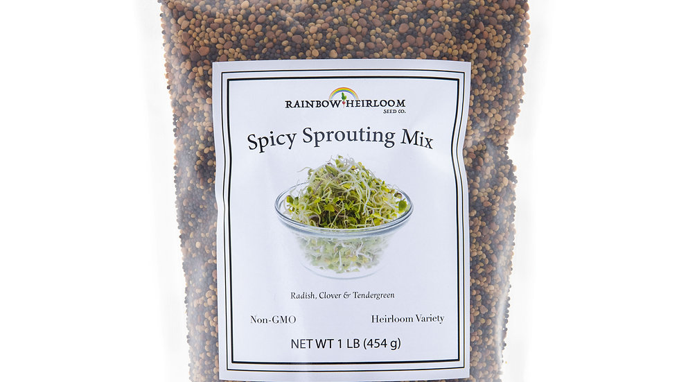 Spicy Sprouting Mix