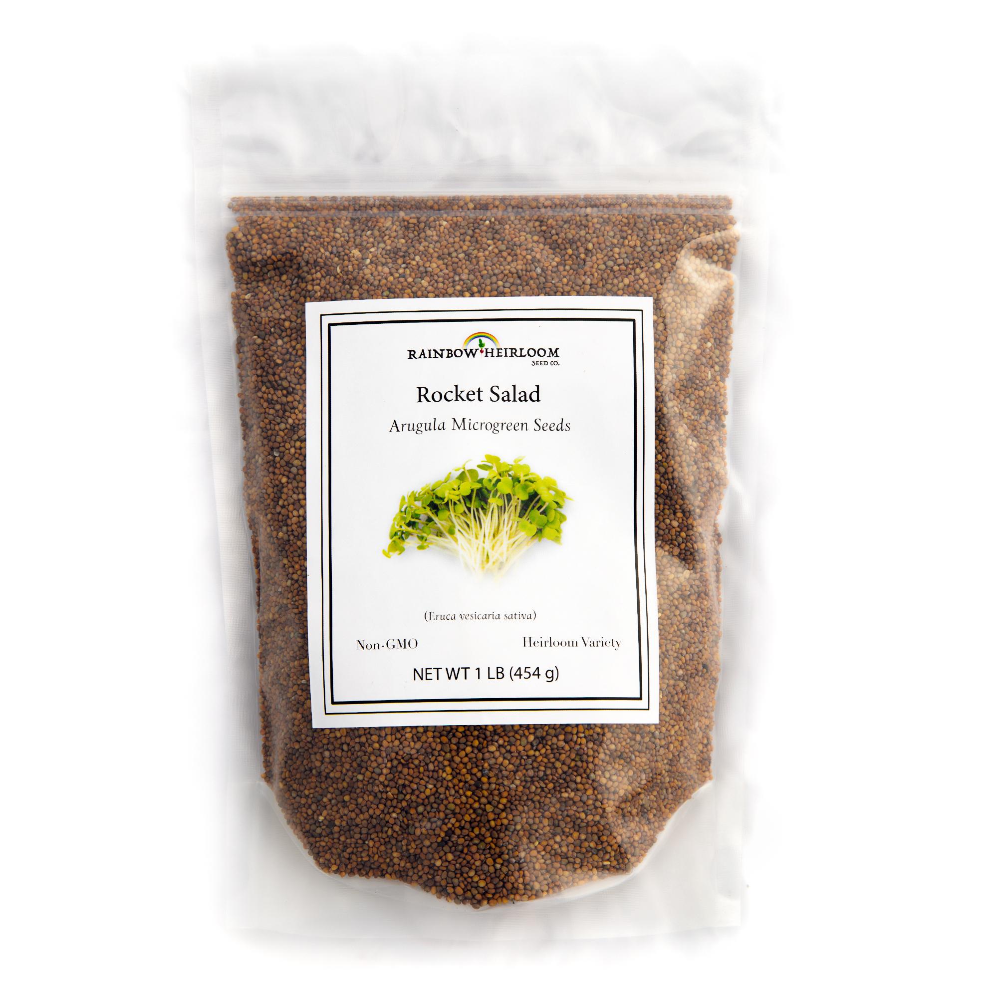 Rocket Salad Arugula Microgreen Seed