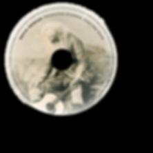 TSTR disc.png