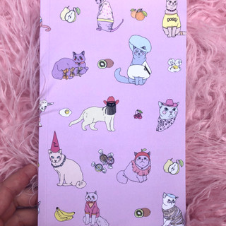 Cats in clothes - notebook