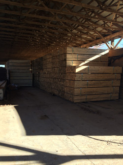 Planer Mill Shed