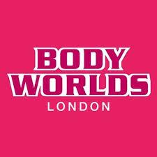 bodyworlds.jpeg
