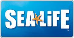 Sealife Sea life