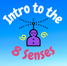 29:17 -- Beginner How did we come up with 8 senses? What are they?