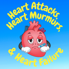 30:18 -- Intermediate What can go wrong with the heart and why does it happen?