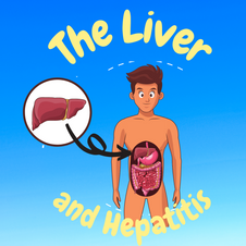 18:58 -- Intermediate What does the liver do and why does hepatitis matter?