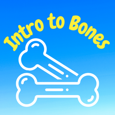 19:17 -- Beginner What are the different kinds of bones and what are their jobs?