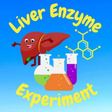 12:45 -- Beginner What happens when liver detoxifies a waste product in your body?