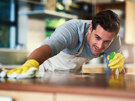 Keep your Tampa home pest free this year