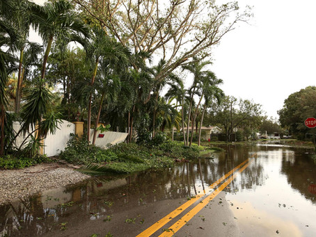 How homeowners can prepare for summer hurricane storm season Tampa Bay FL