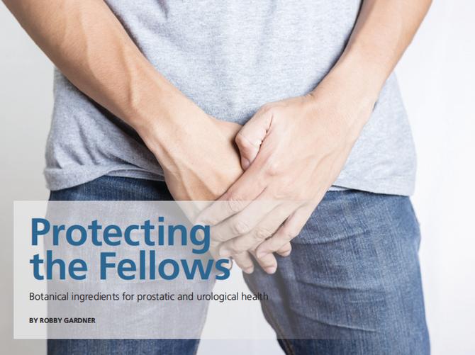 Men's Health Protecting the Fellows