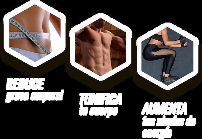 transforma tu cuerpo, reduce grasa corpral, tonifia tucuerpo, aumenta tu niveles de energía