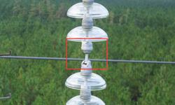 Bell Inspection