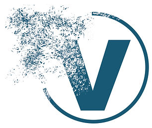 logo coach de joie bleu v2.jpg