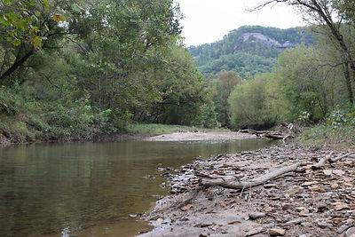 Gladie Creek and its banks