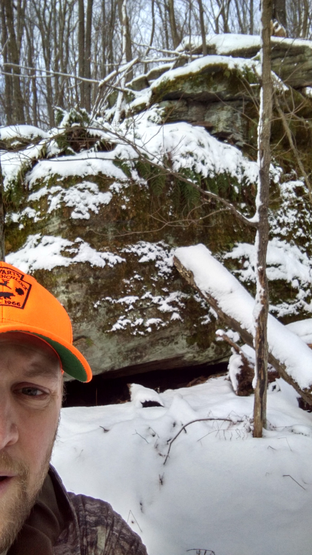 Finding new areas to hunt can bring the love of hunting back
