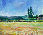 Landschap bij Font-de-Barral