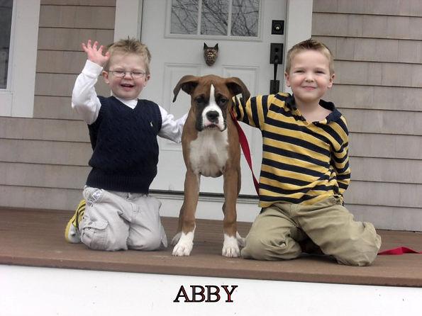 abby6.jpg