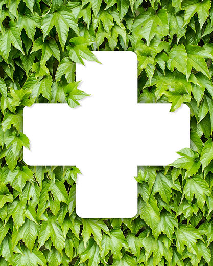 Medical cross on a background of green l
