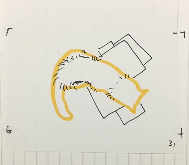 анимация   son architecture