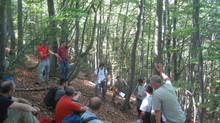 Gestione degli habitat forestali e Natura 2000