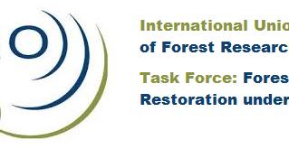 Esperienze di Misure Adattative nelle scienze forestali e nel restauro forestale in risposta al camb
