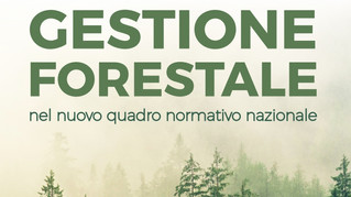 Convegno sulla gestione forestale - 2 maggio 2019