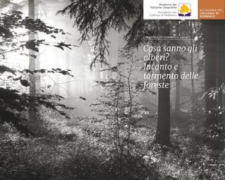 Colloqui di Dobbiaco 2019 - Tre giorni per parlare di alberi e foreste