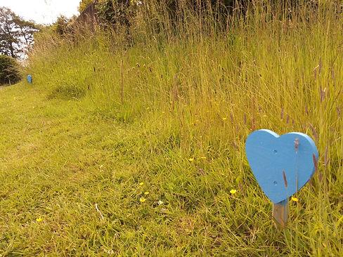 Yealmpton verge with blue heart closeup.jpg