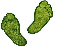 Carbon footprint 1.jpg