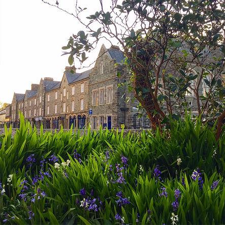 Bluebells Duke Street Tavistock.jpg