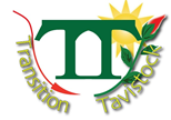 Transition Tavistock