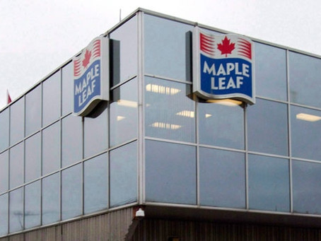 Let's not rush to judgement on Maple Leaf