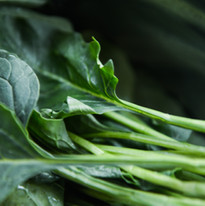 close-up-collard-greens-color-750952.jpg