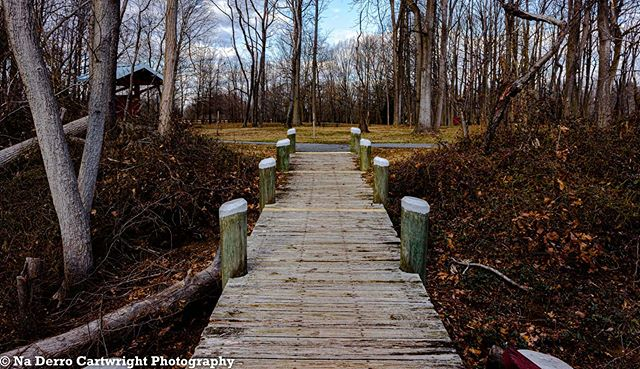Path home #harfordcounty #marinerpointpa
