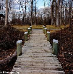 Path home #harfordcounty #marinerpointpa