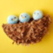 Spring Nest Project.jpg